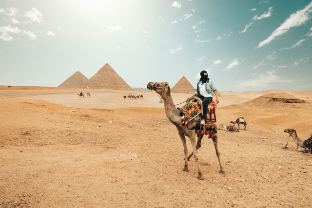 tourist on the camel